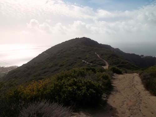 Looking over to Aliso Peak