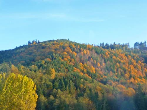 Fall Color in the Mountain Loop Highway