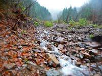 Creek along the Way