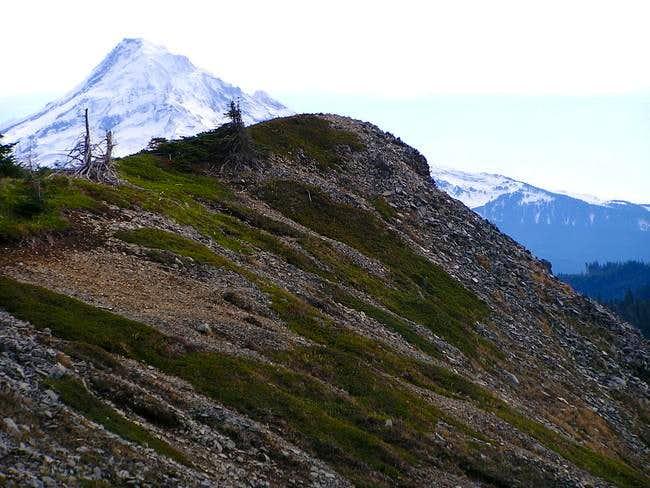 Summit and Hood as viewed...