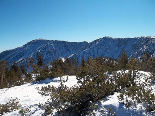 Jepson and San Gorgonio