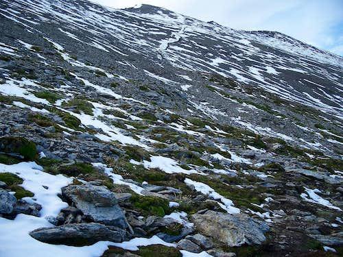 Cerro Guanaco path