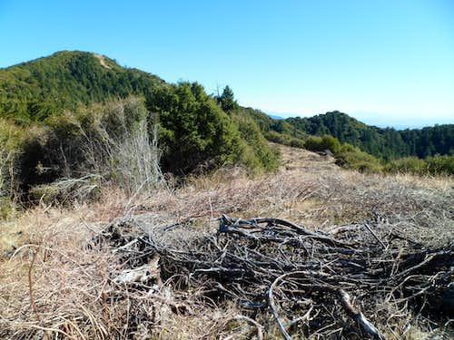 Rankin Peak