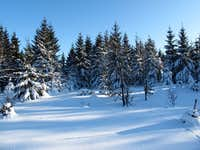 Above Altenberg and Cinovec