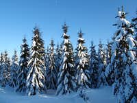 Winter in the region of the German-Czech border
