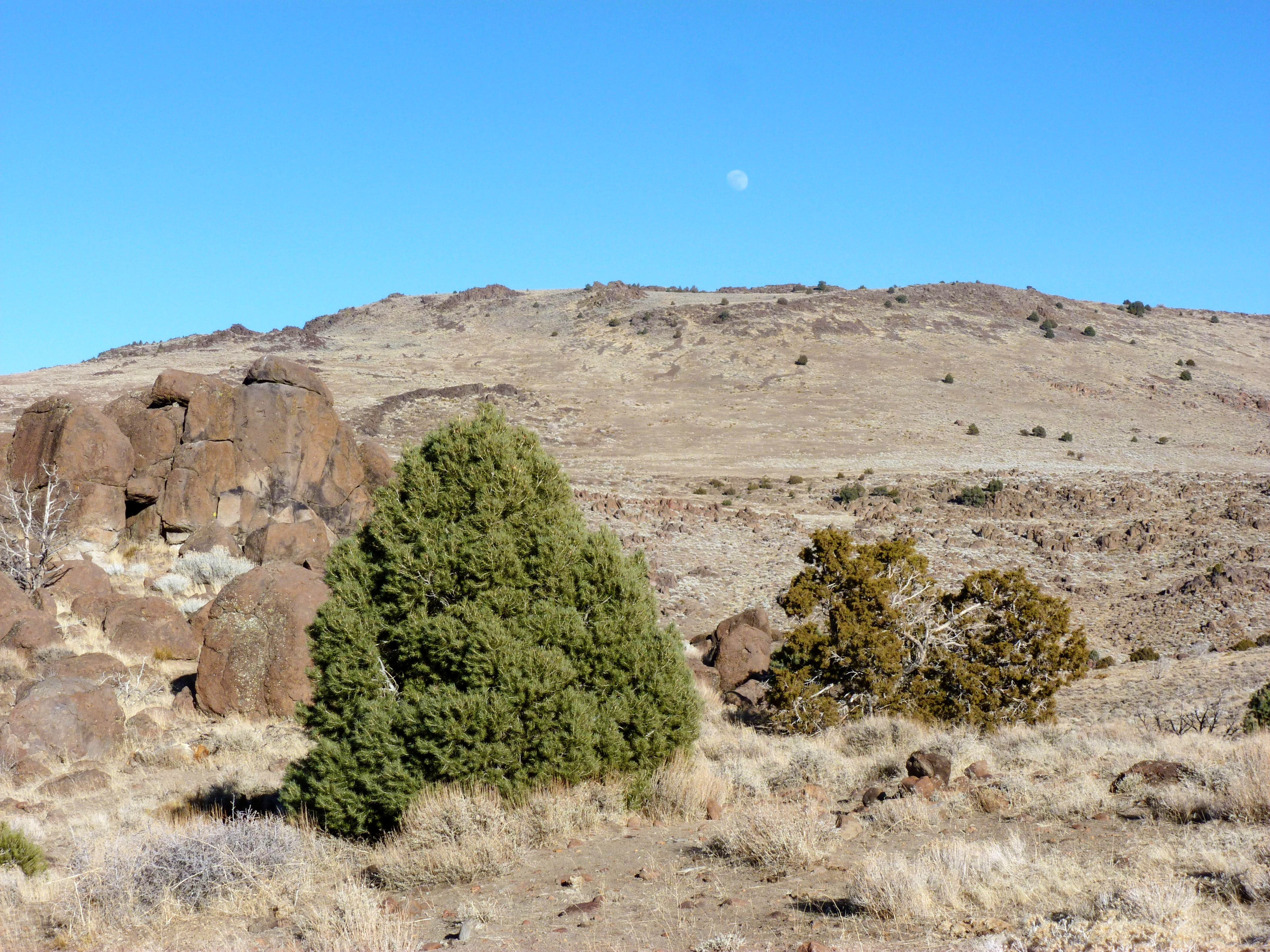 "Peak 6405 – ""Damonte Ranch Plateau"" Nevada"