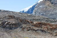 View along trail to Athabasca Glacier