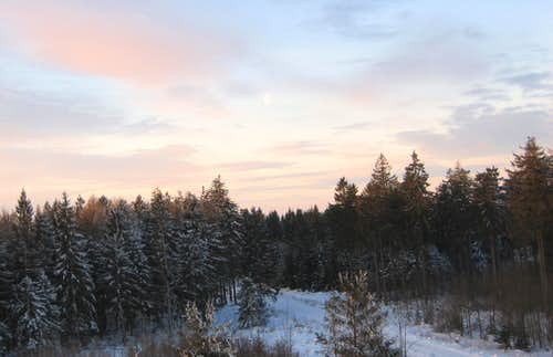 Winter in the Harz Mountains