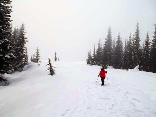 BearQueen nearing the summit