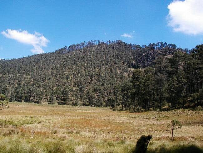 Cerro Mirador Grande.