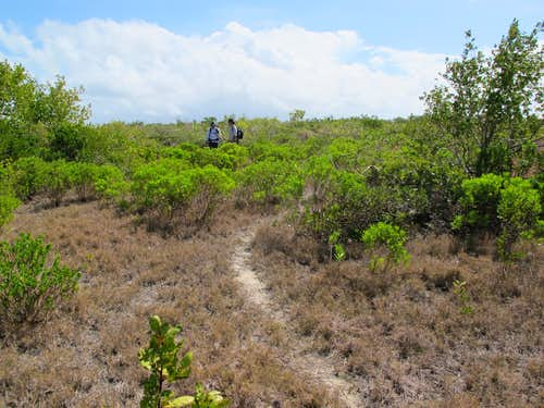 Path on East Caicos