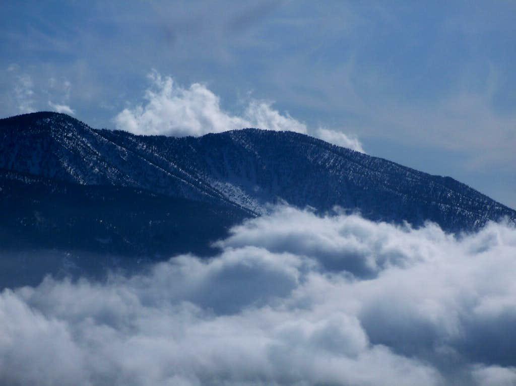 San Bernardino Peak in the center