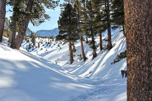 Winter Ascent of San Gorgonio