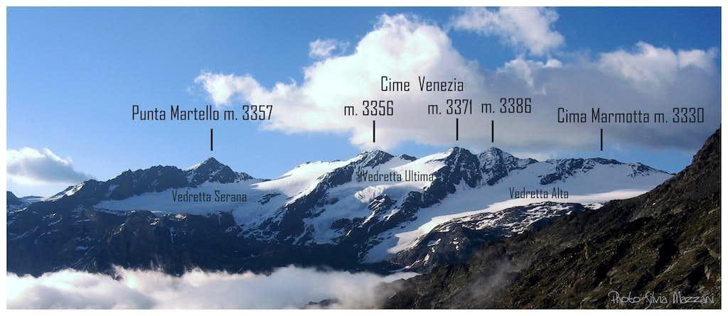 View on Venezia Subgroup