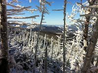 views of Bretton Woods from Mt Adams