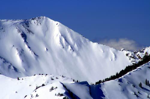 Old Avalanche on Cardiac Ridge