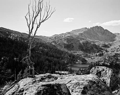 Lester Pass and Mount Lester