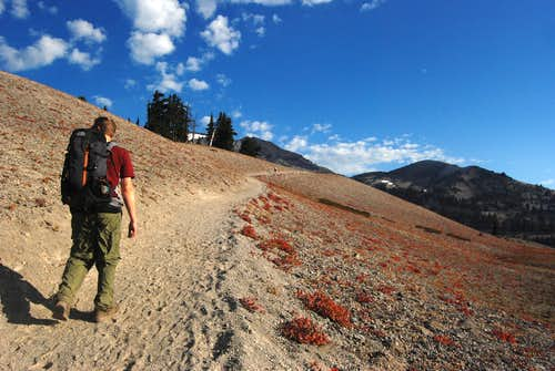 Trail to South Sister