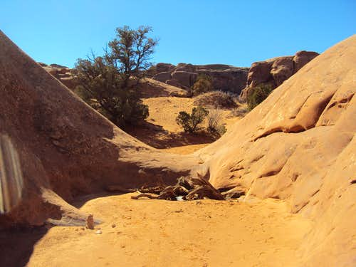 Bottom of Primitive Trail Canyon