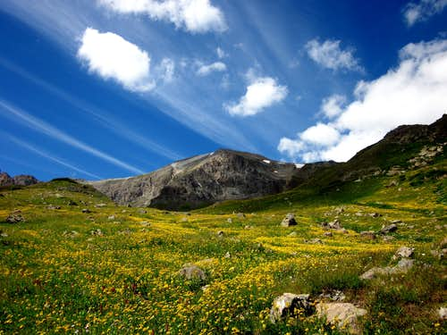 Handies Peak {14,048'}