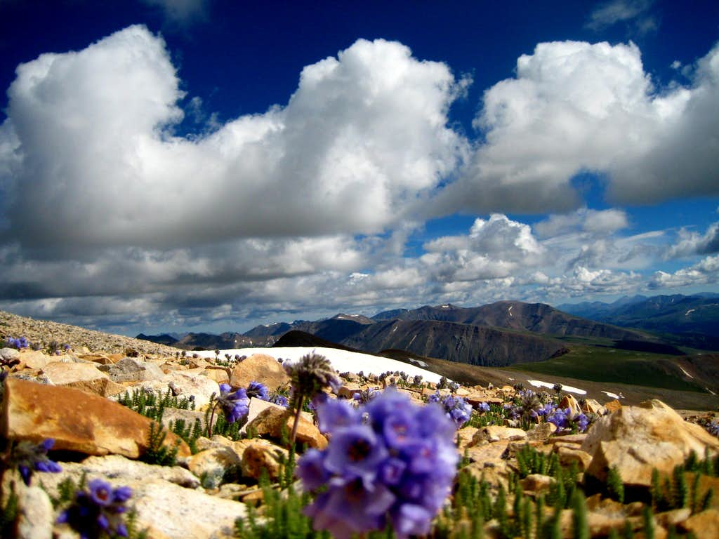 Summit of Mount Sherman