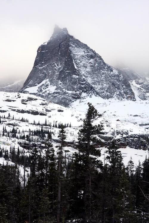 Winter Spearhead