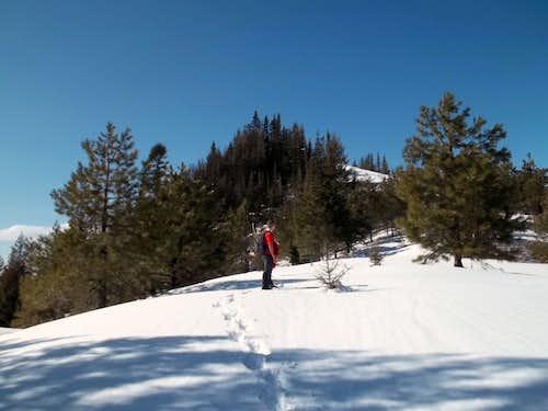 Josh nearing the summit