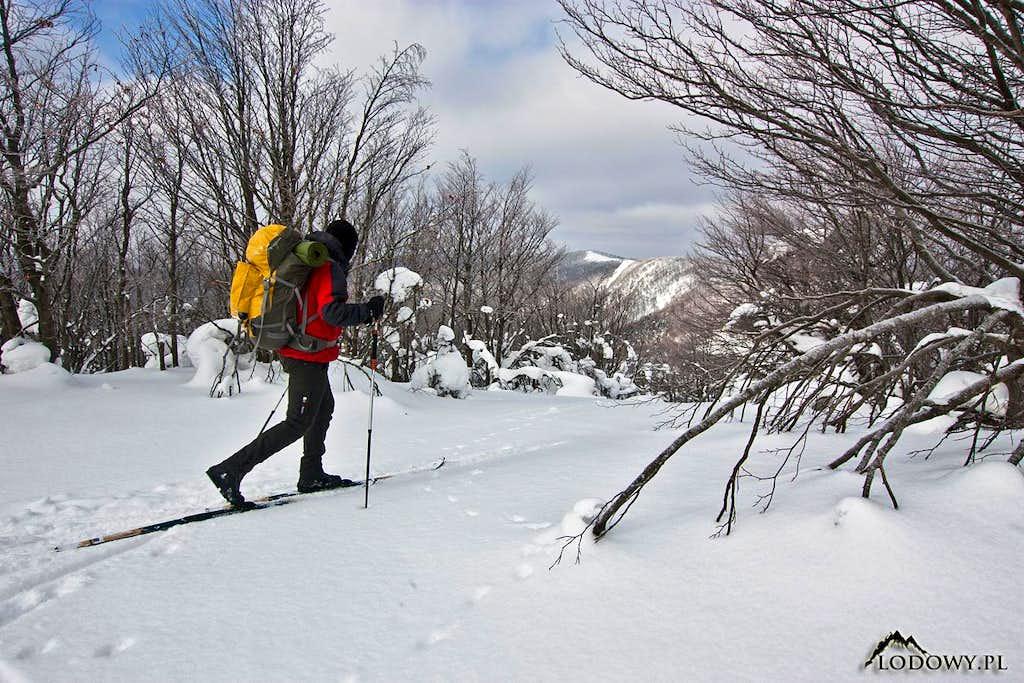 Bieszczady ski touring