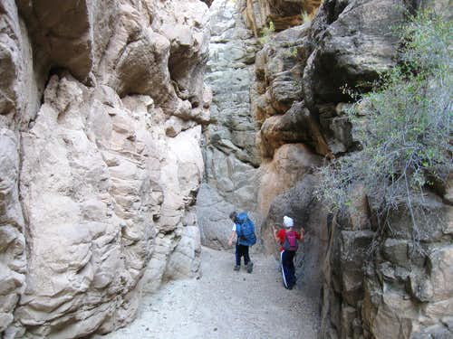 North Fork Horse Canyon