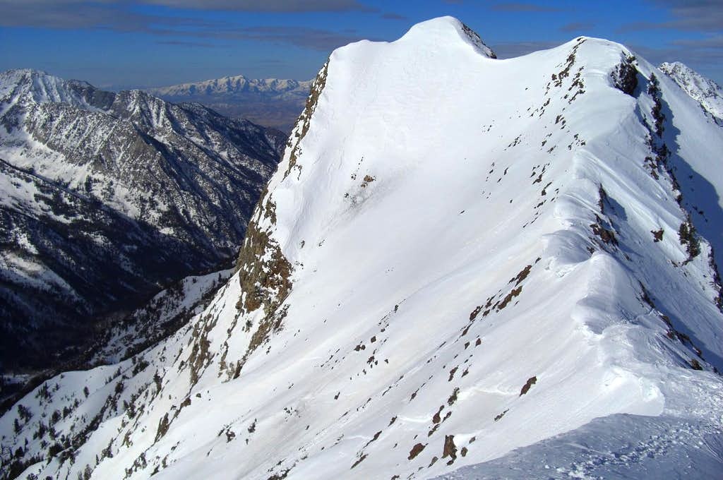 Monte Cristo's summit.