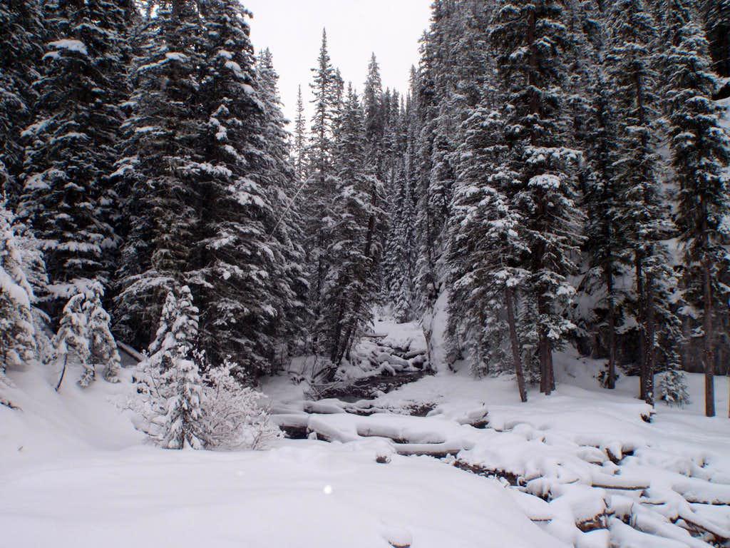 King Creek in Winter