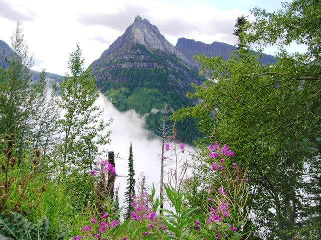 This beautiful shot of Mount...