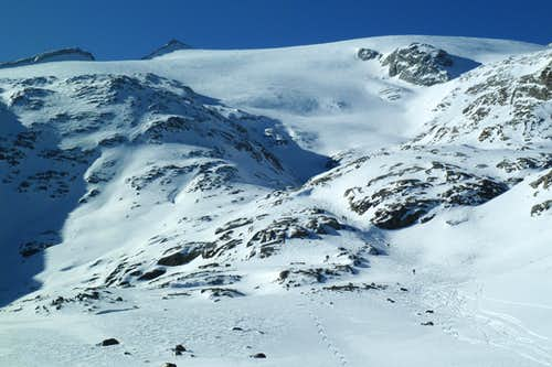 Skiers climbing the glacier to Monte Magro