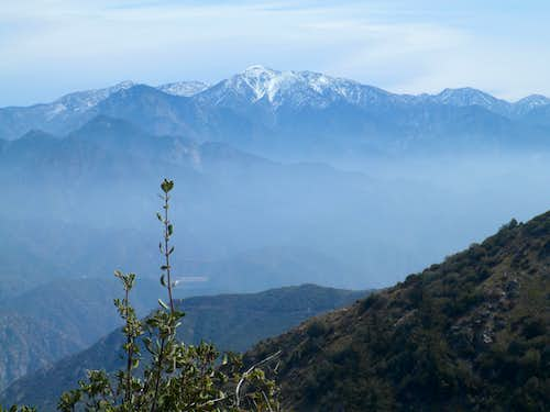 Mt. Baldy from Pine Mountain
