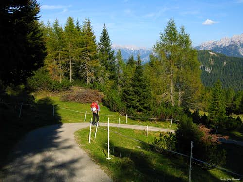 The afternoon's last sunrays on Pian dei Buoi, Marmarole, Eastern Dolomites
