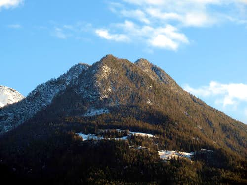 Combatissière's Black Forest under Dard's Point