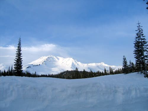 Mt. Shasta from Bunny Flat