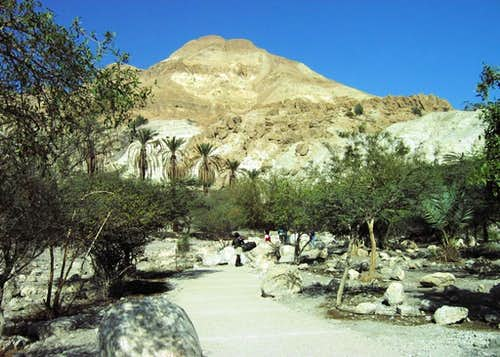 Wadi David. Mt Yishay (Dead sea area)