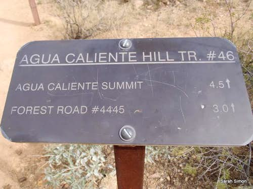 Metal Trailhead Sign