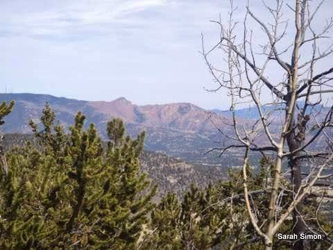 Pilot Peak from Pulver Mountain