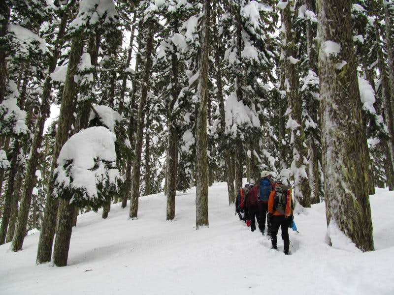 Pacific Crest Trail towards Kendall Katwalk : Photos ...