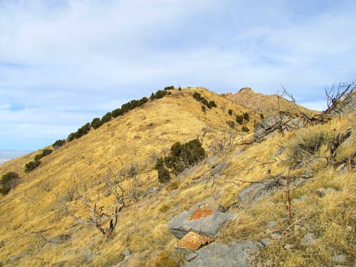 Ridge Crest, Castle Rock Behind