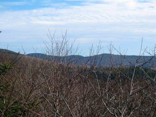 Bushwack Range