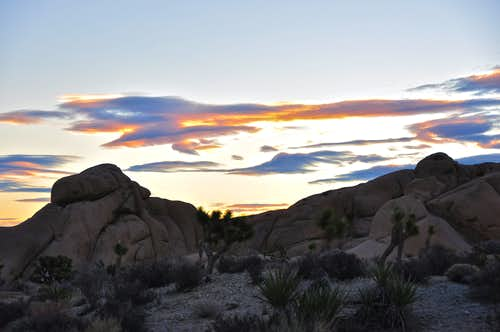 Sunset in Joshua Tree