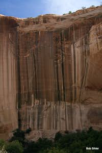 Varnished Wall in Calf Creek Canyon