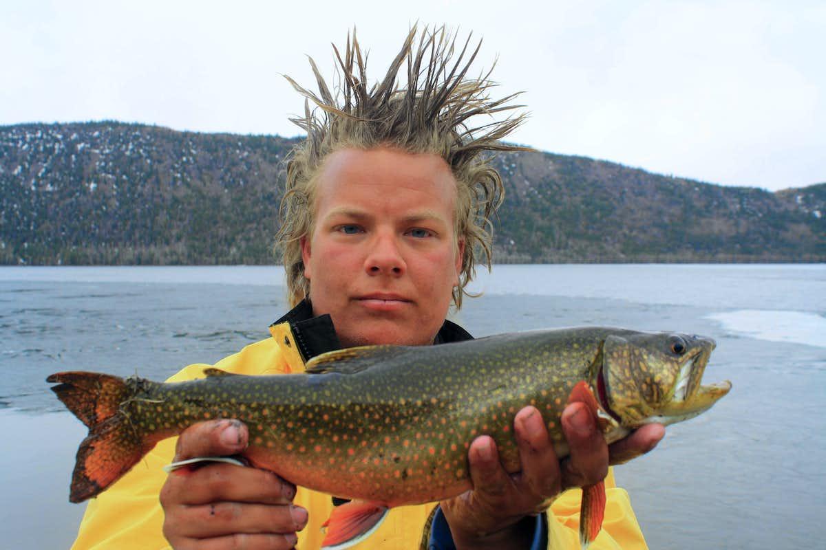 Image gallery splake fish for Fish stores in utah
