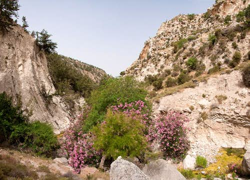 The upper end of Avakas Gorge