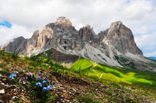 Sassolungo 4 Seasons