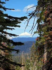 Mt. Shasta from Lassen's NW Ridge