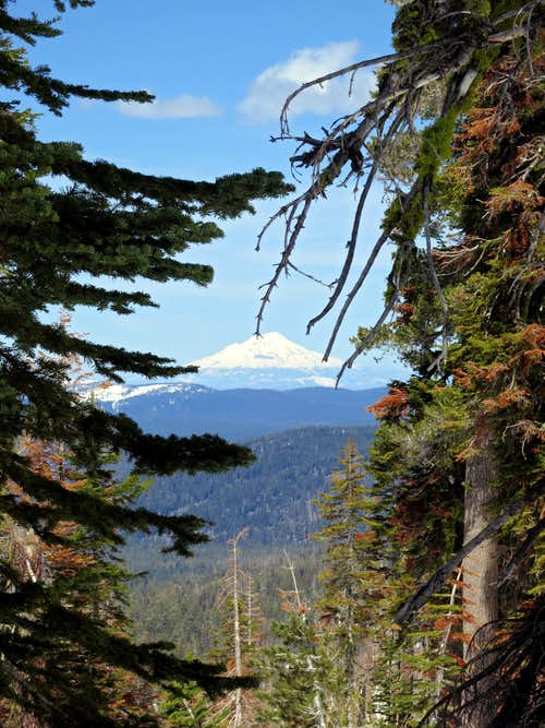 Mt. Shasta from Lassen's NW Ridge